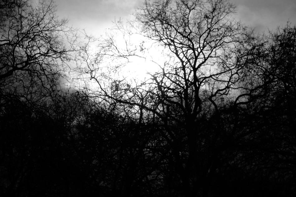 Photography_London2006_02