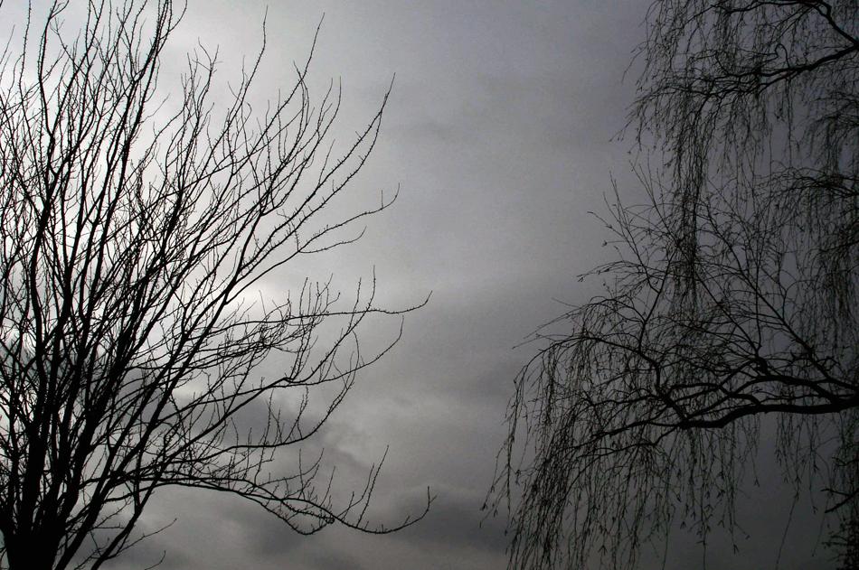Photography_London2006_04